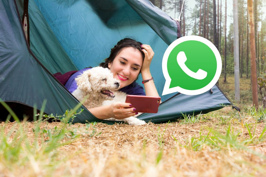 WhatsApp Video Chat Funktion